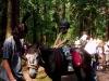 výlet s koníky červen