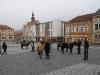 Svatý Martin ve Voticích 11.11.2012