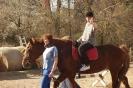 Terapie jízdou na koni Jaro 2018