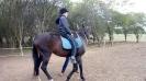 Děti ze ZŠ Trávníčkova na koních v Hostivaři