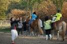 Terapie na koni říjen 2018