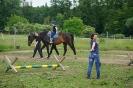 Terapie na koni červen